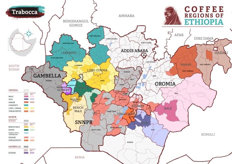 Coffee-Regions-of-Ethiopia-First-Edition-Trabocca